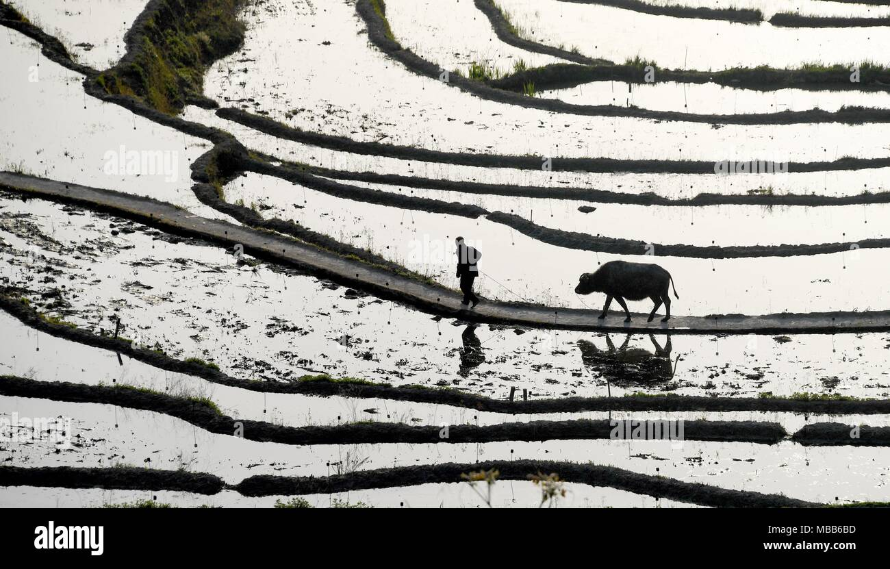 Hubei. 10th Apr, 2018. Aerial photo taken on April 10, 2018 shows the bird's-eye view of terraced fields on the Wuyun mountain in Qichun County of central China's Hubei Province. Credit: Cheng Min/Xinhua/Alamy Live News - Stock Image