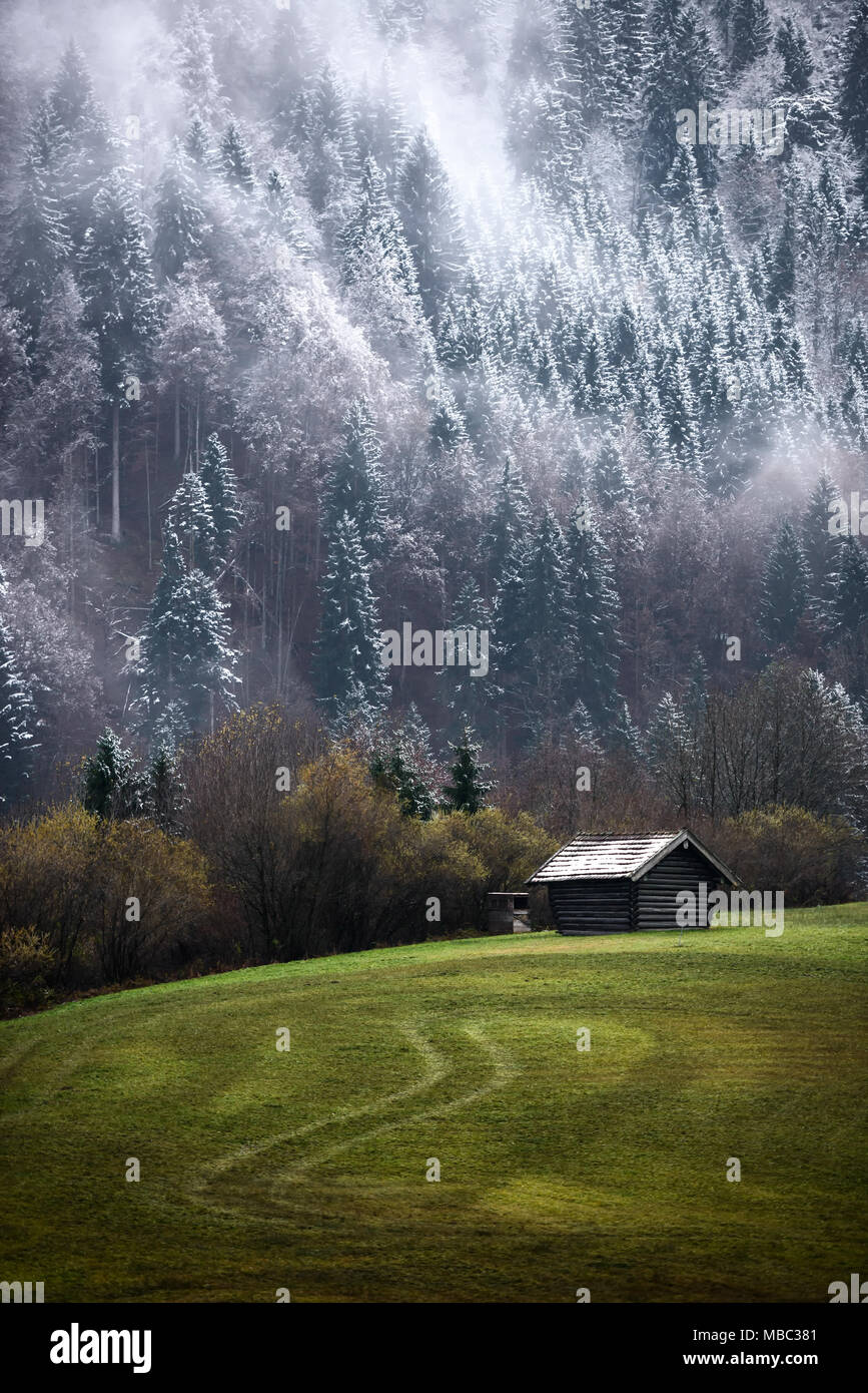 Geroldsee forest during autumn day with first snow and fog over trees, Bavarian Alps, Bavaria, Germany. - Stock Image