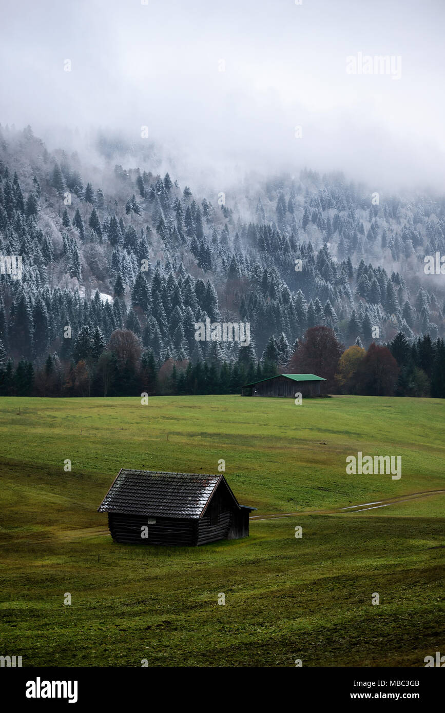 Geroldsee forest during autumn day with first snow and fog over trees, Bavarian Alps, Bavaria, Germany. Dramatic balance between forest and field. Typ - Stock Image