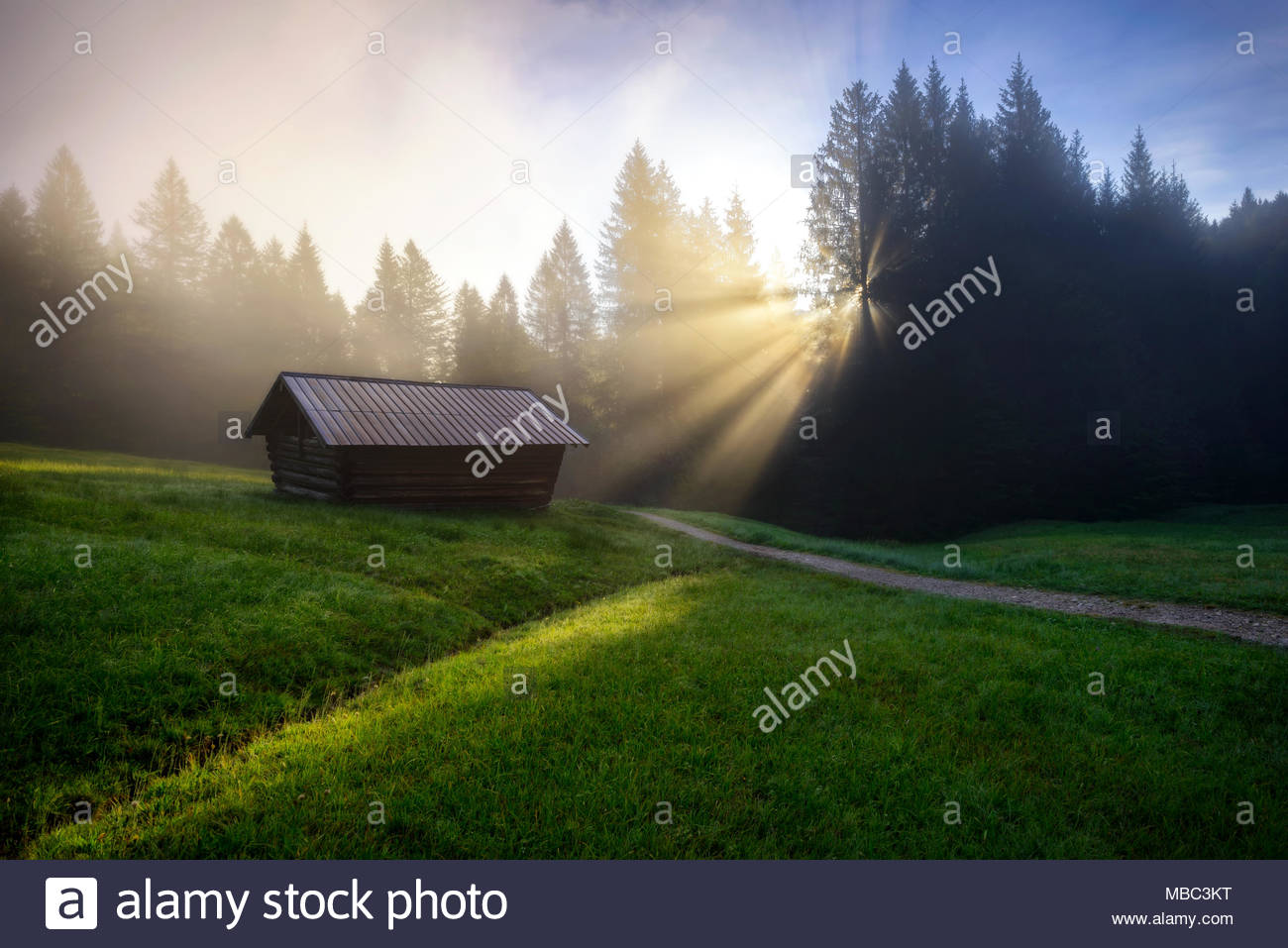 Geroldsee forest during summer day with beautiful foggy sunrise over trees, Bavarian Alps, Bavaria, Germany. - Stock Image