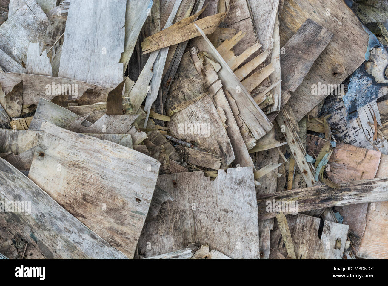 Pile of plywood pieces which are rotting / decaying and falling apart and faking. - Stock Image