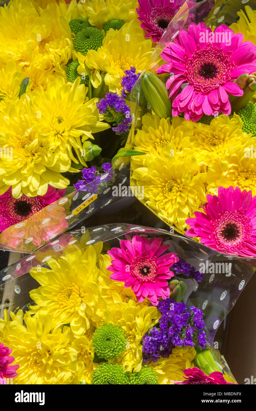 Close-up of Springtime flower poseys / bunches of colourful flowers. - Stock Image
