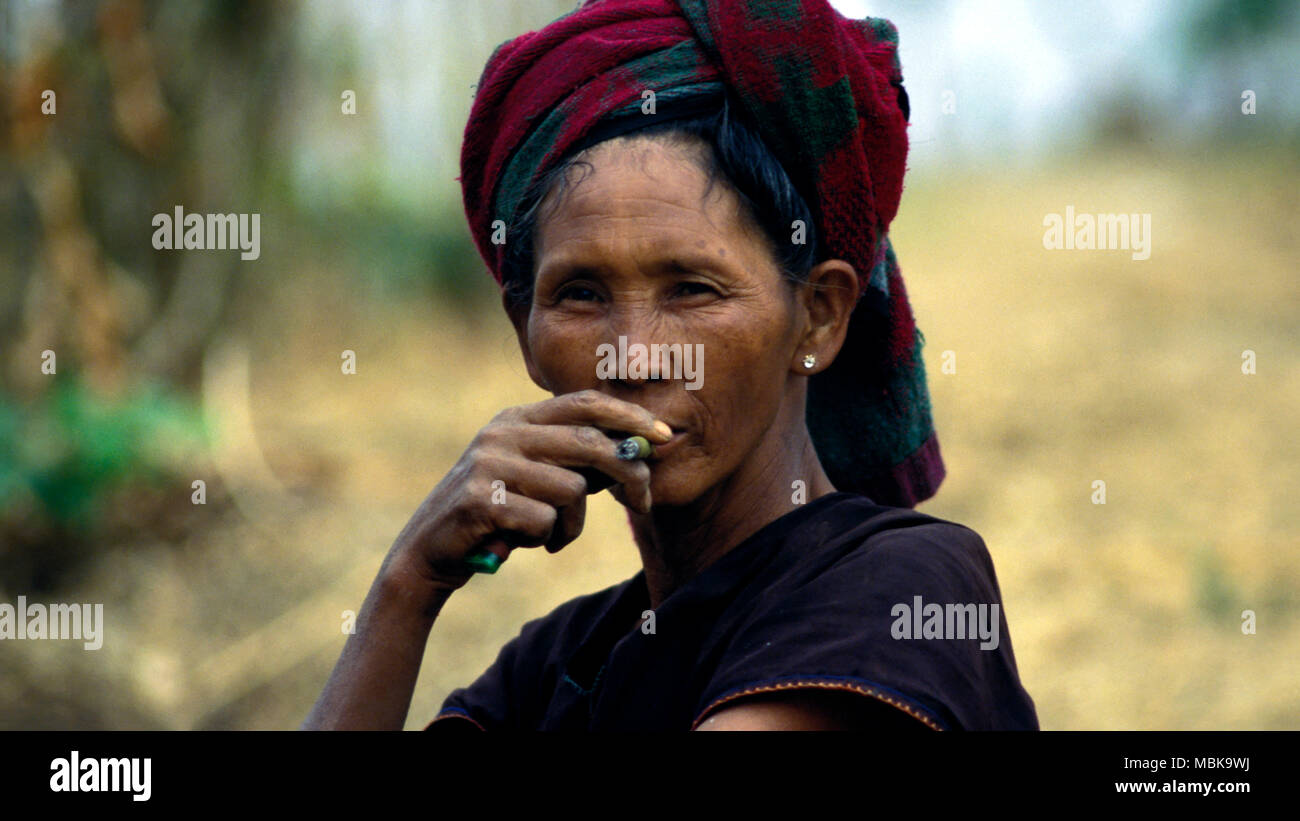 An indigenous Taung-yo woman smoking a cheroot (cigar) while staring at the camera. Shan State, Burma (Myanmar). - Stock Image