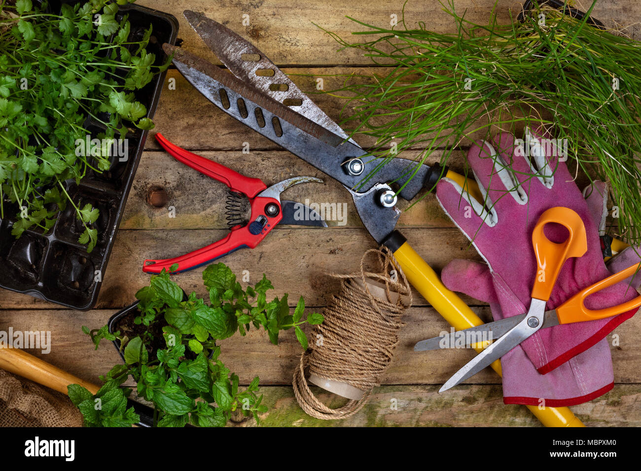 Gardening - Horticulture. A few garden tools used when gardening. - Stock Image