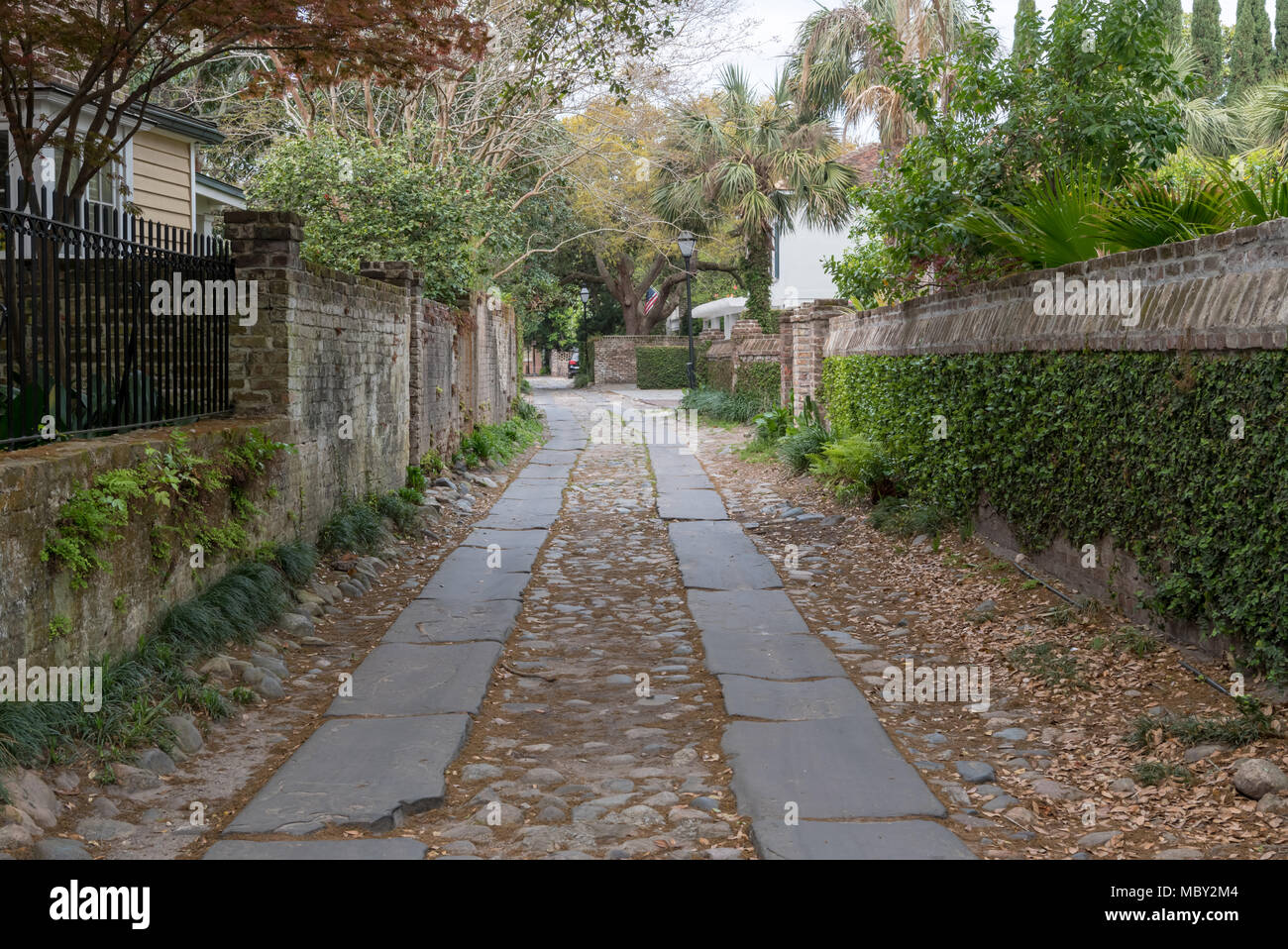 Ivy Covered Side Alley in Charleston South Carolina - Stock Image