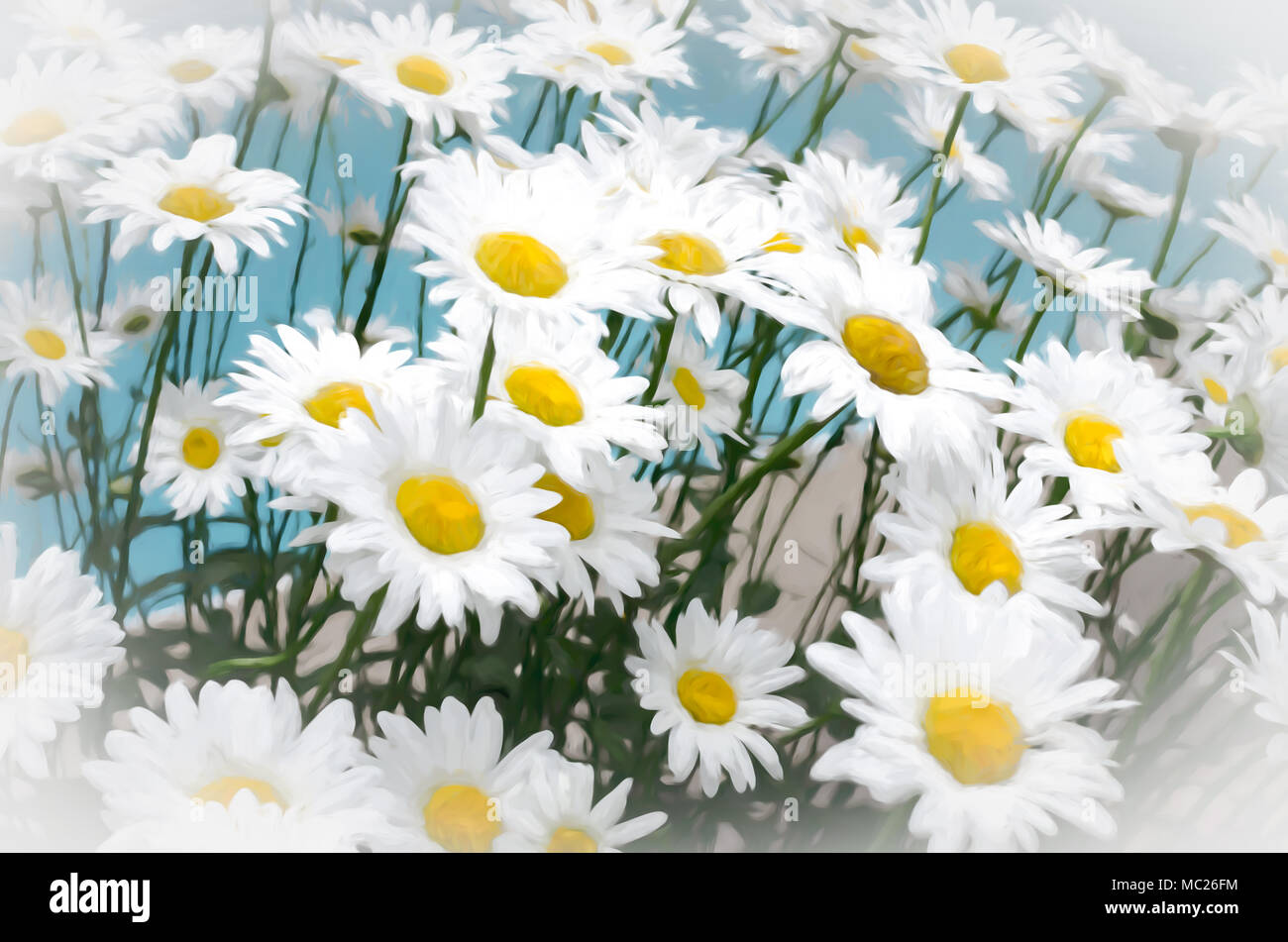 Daisies Flowers In Painting Style Look Like Painting By Hand Stock