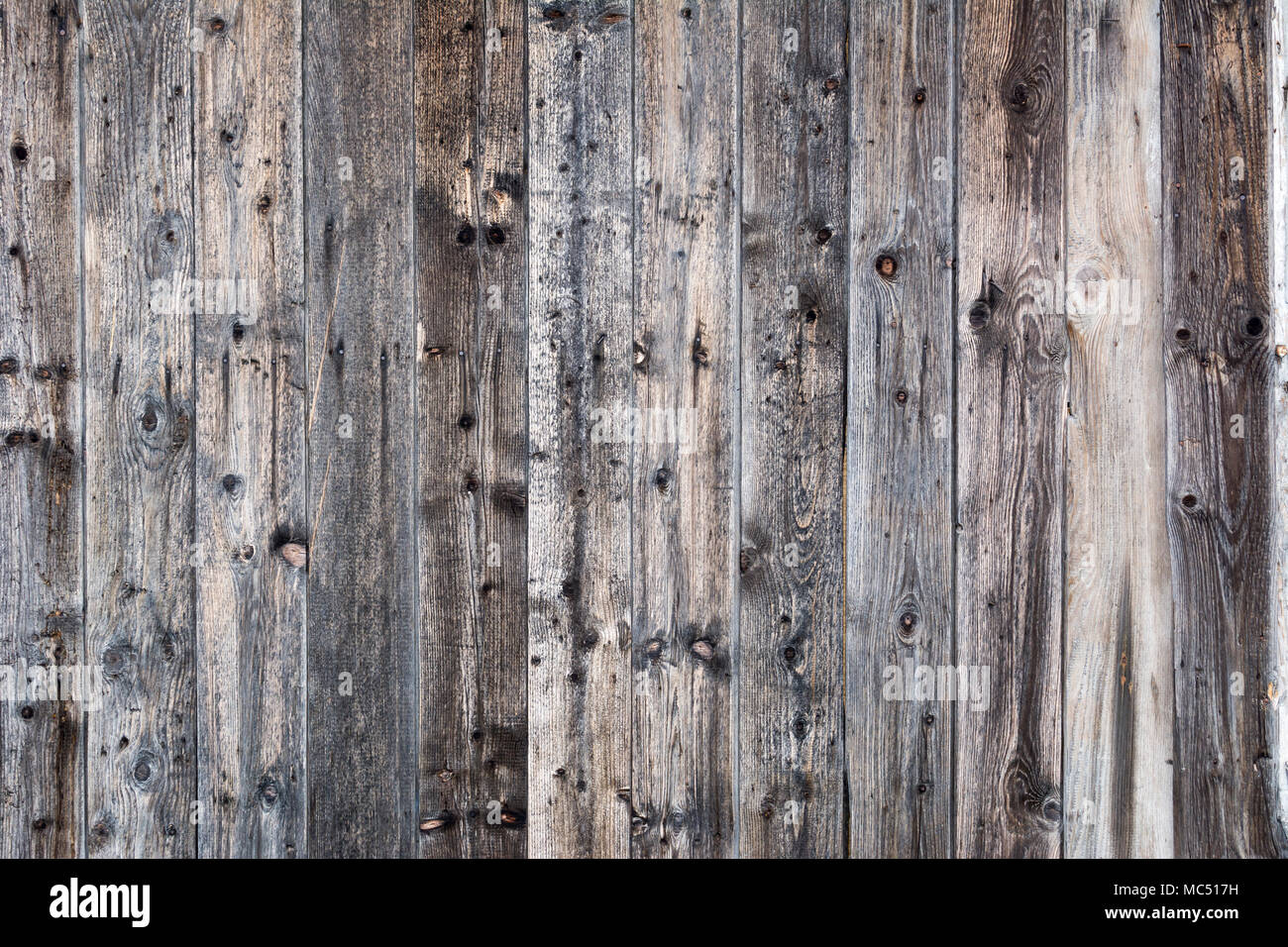 wood template texture natural background empty template stock