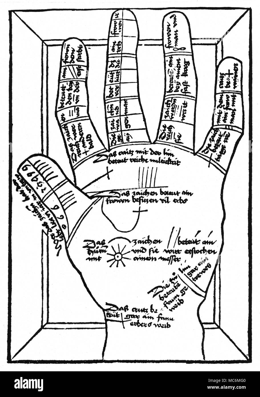 Palmistry Mediaeval Palmistry A Woodcut Diagram From The First