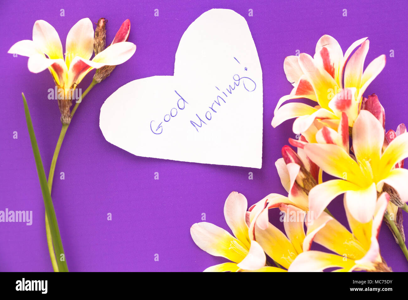 Note In Shape Of Heart With Words Good Morning With Flowers On