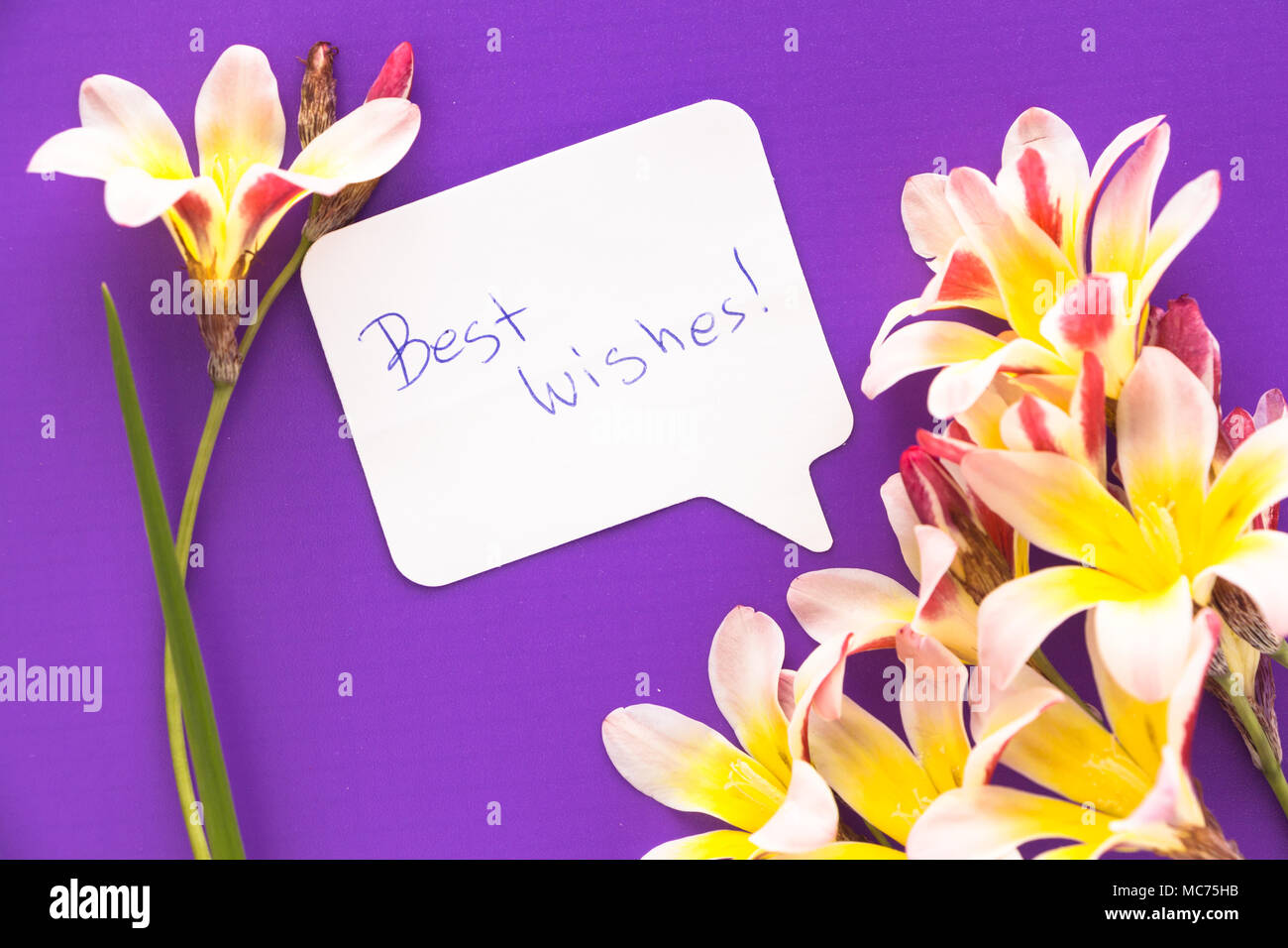 Note In Shape Of Heart With Words Best Wishes With Flowers On