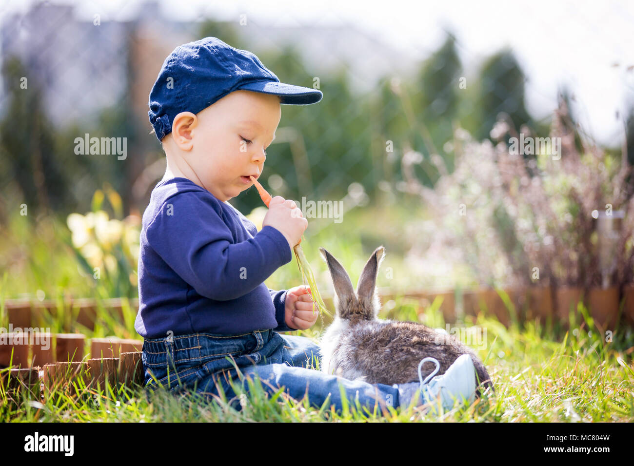 Cute Little Baby Boy Child Feeding Little Bunny With Carrots In