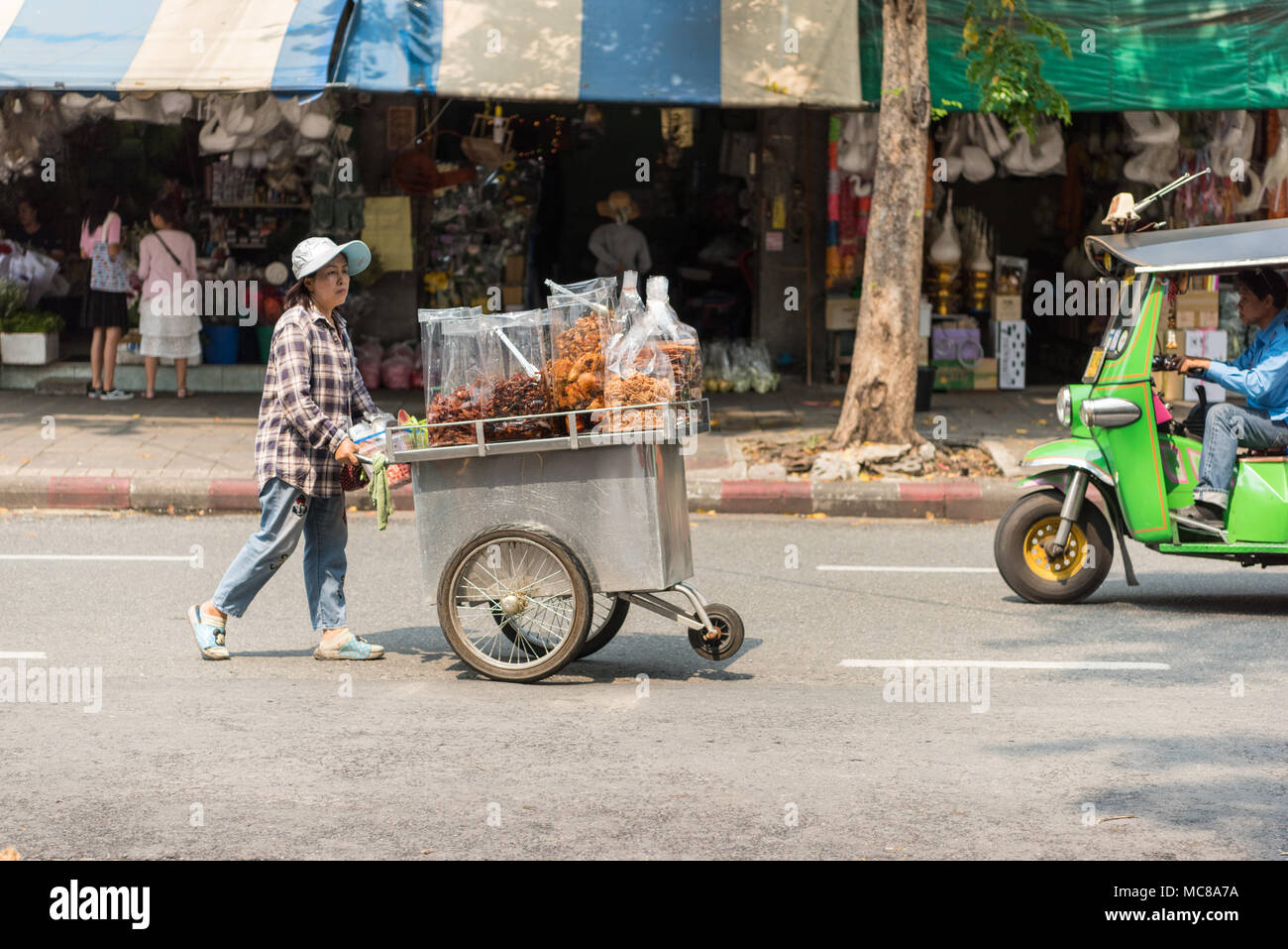A world ruled by cats | Rol A-street-food-vendor-pushes-her-cart-on-a-road-in-bangkok-thailand-MC8A7A
