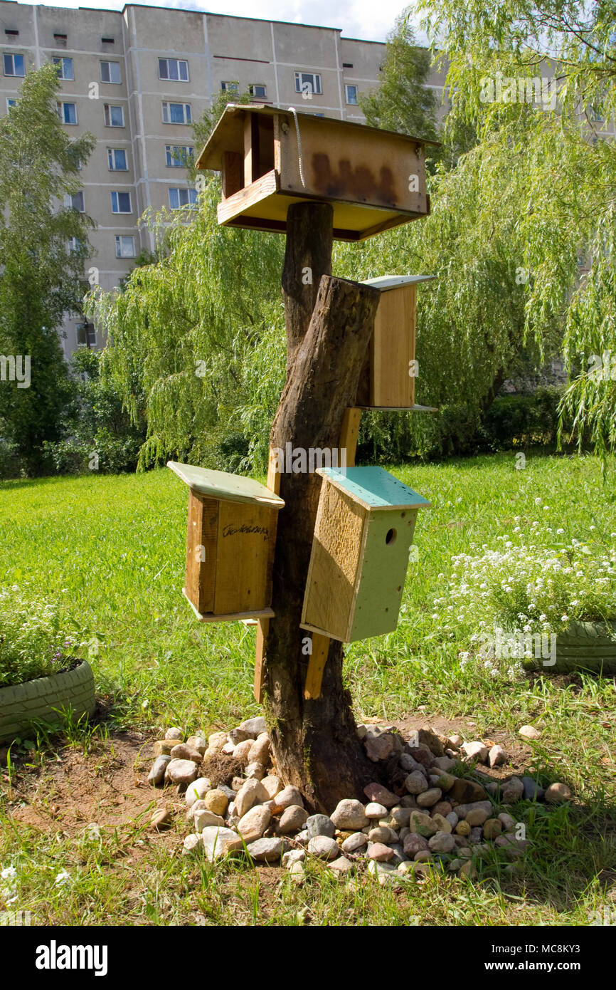 Birdhouses And A Bird Feeder In The Garden In The Courtyard Of A  Multi Storey Building