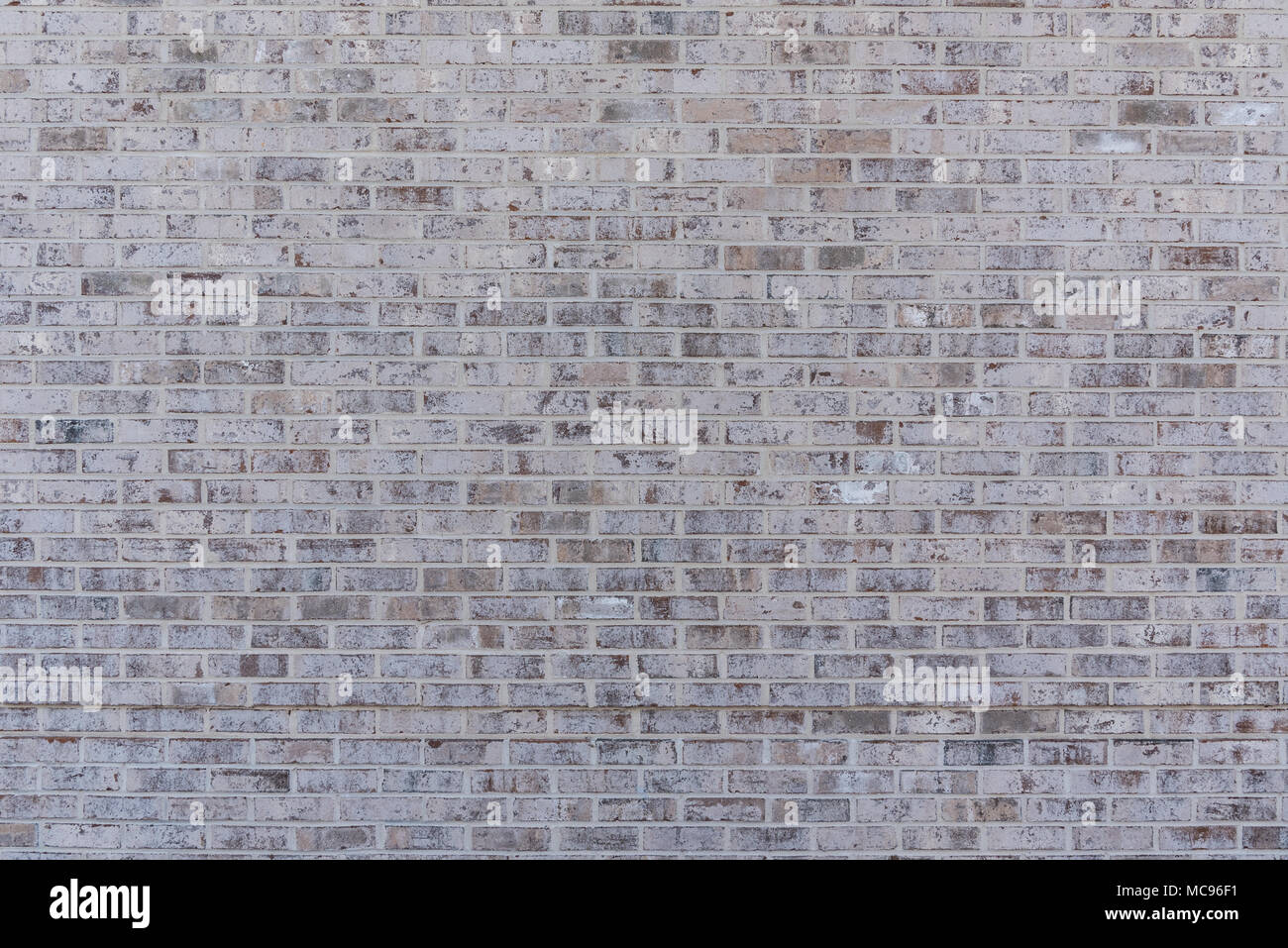 Tan Brick Wall Texture provides horizontal background image - Stock Image