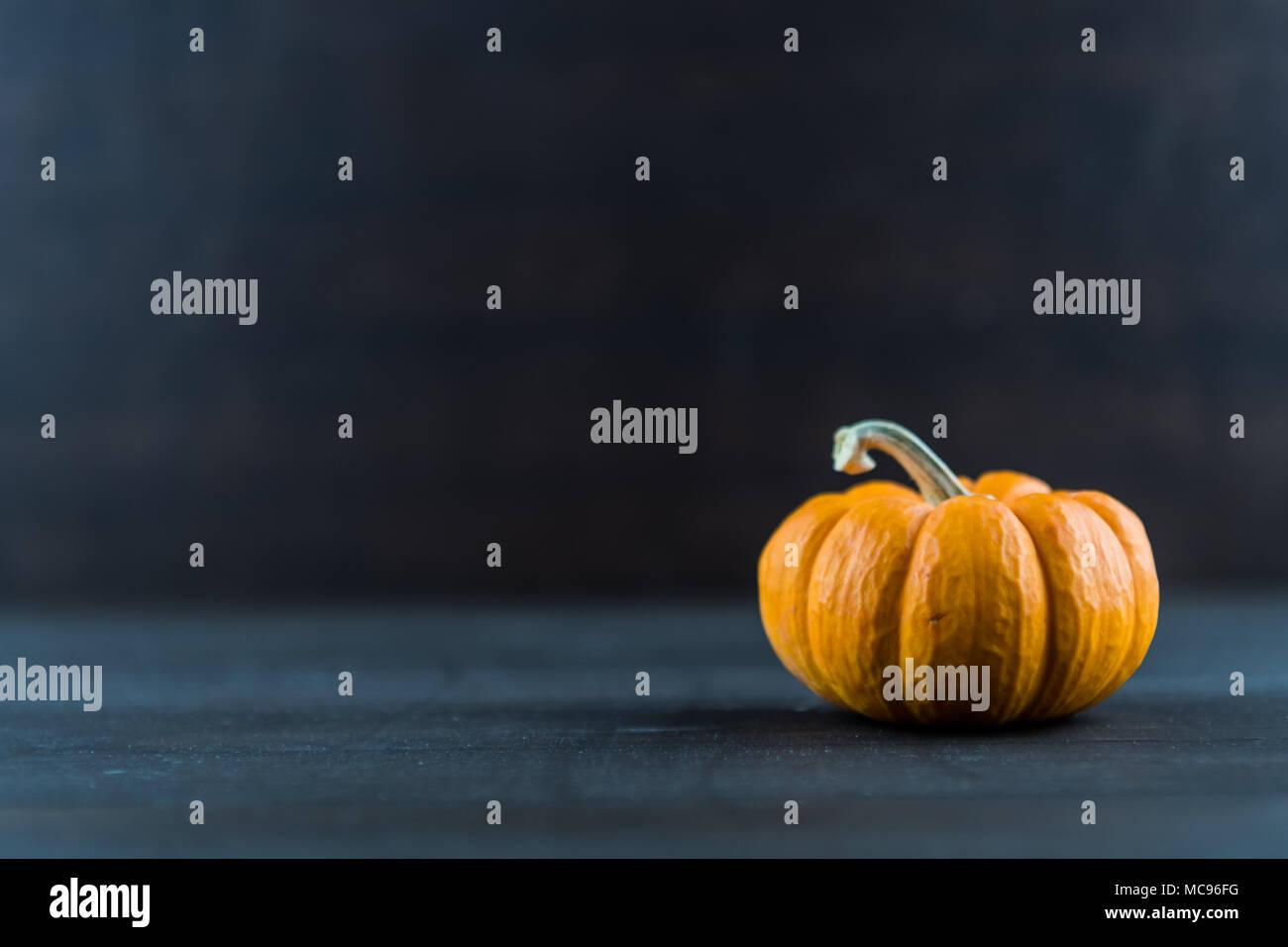 Texture of Jack Be Little Pumpkin on Dark Background - Stock Image