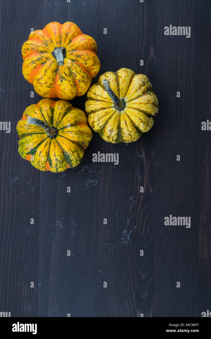 Three Acorn Squash with Copy Space Below over dark background - Stock Image