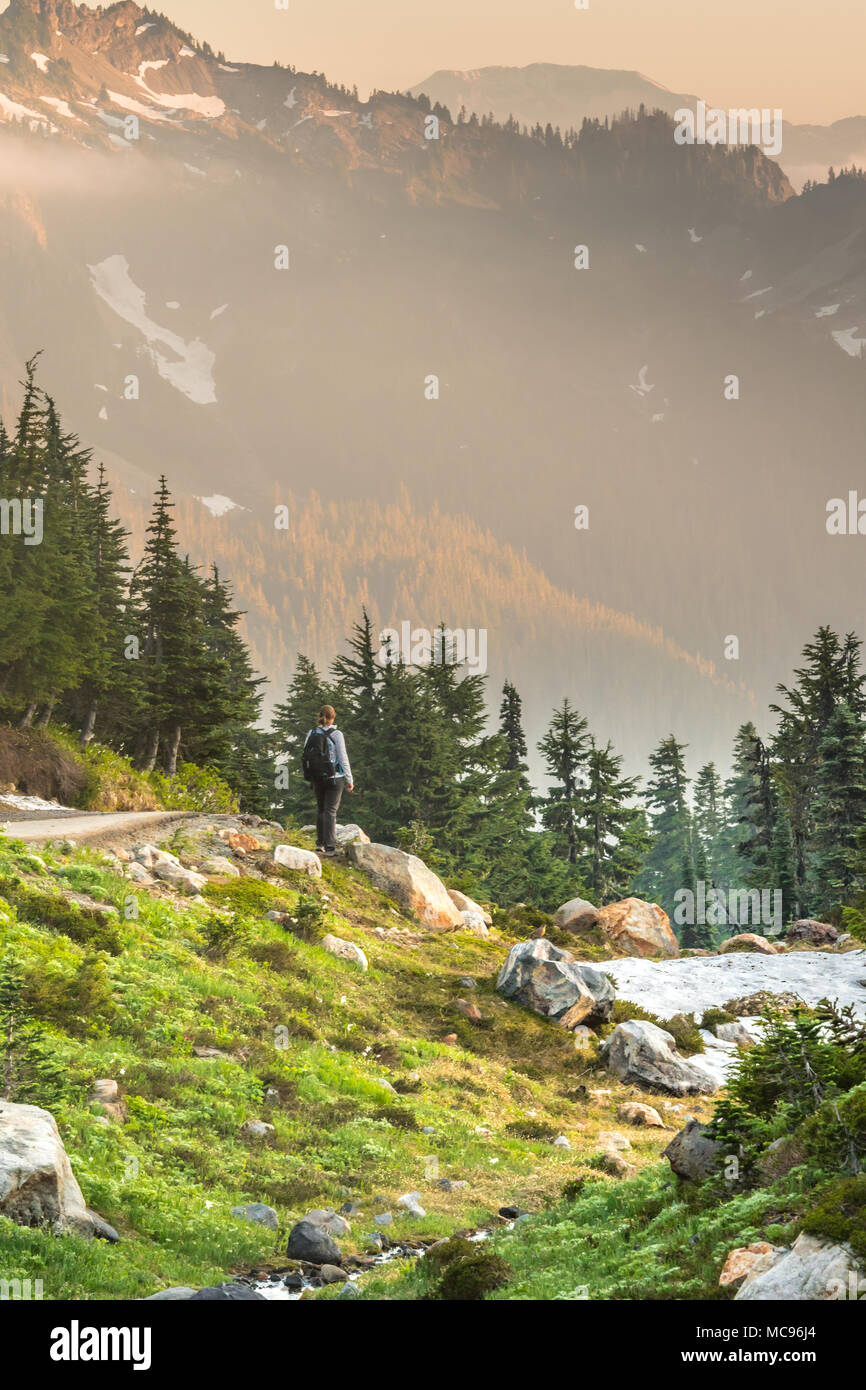Woman Takes in Afternoon View in Cascades mountains - Stock Image