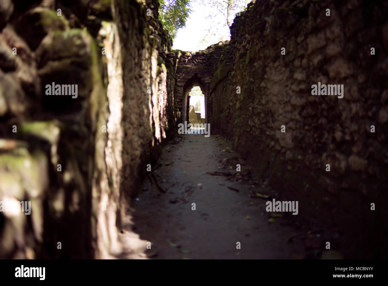 A walkway leading to an arch at the ancient Mayan site of Cahal Pech, western Belize. - Stock Image