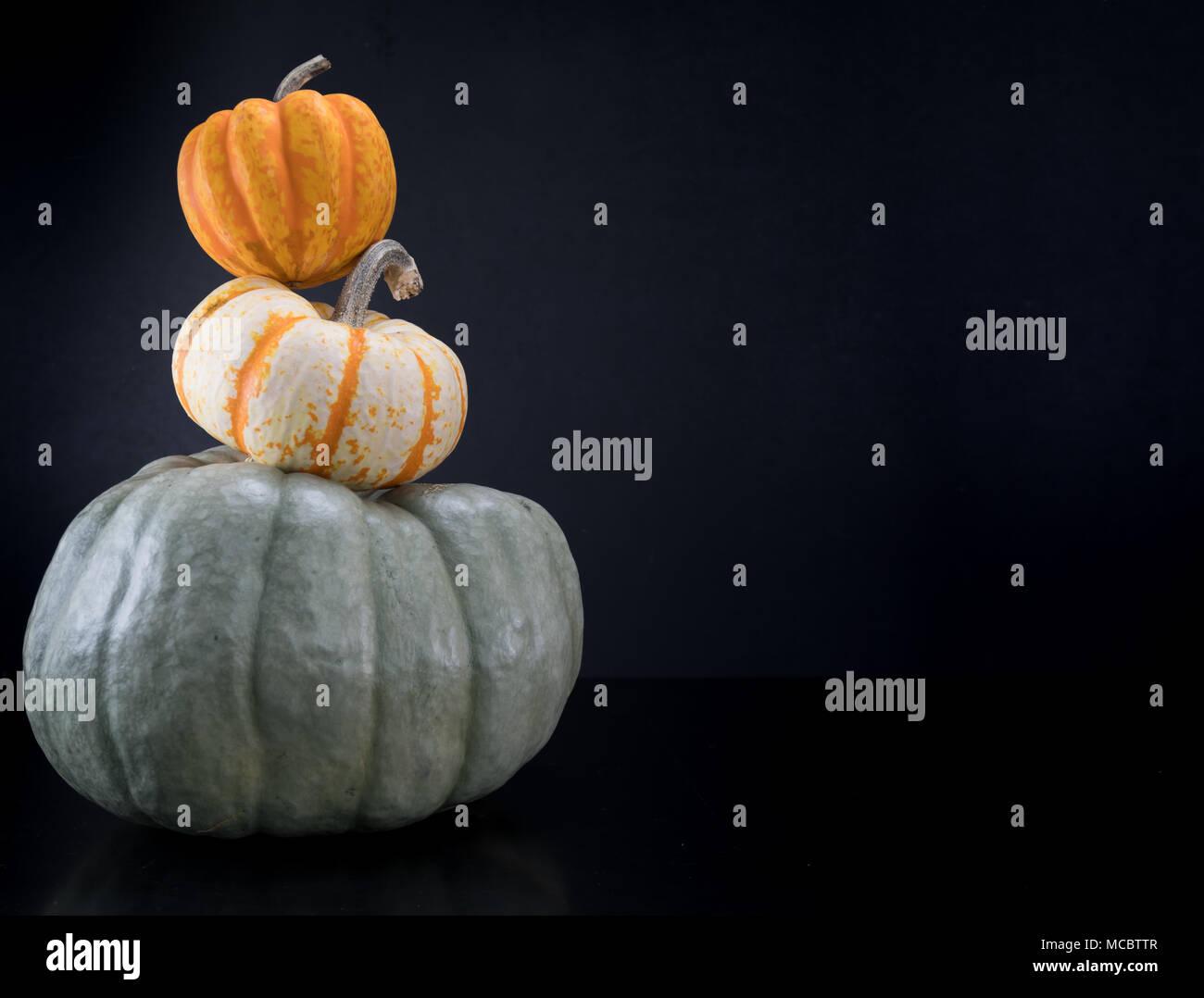 Acorn Squash Sits Atop Pumpkin Tower - Stock Image