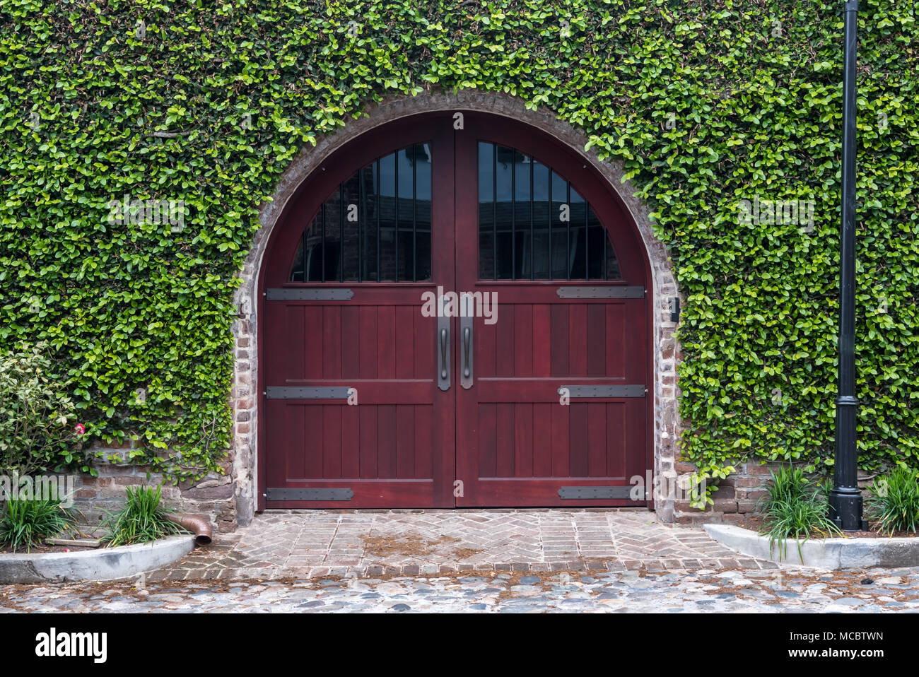 Arching Wooden Door and Ivy Wall - Stock Image