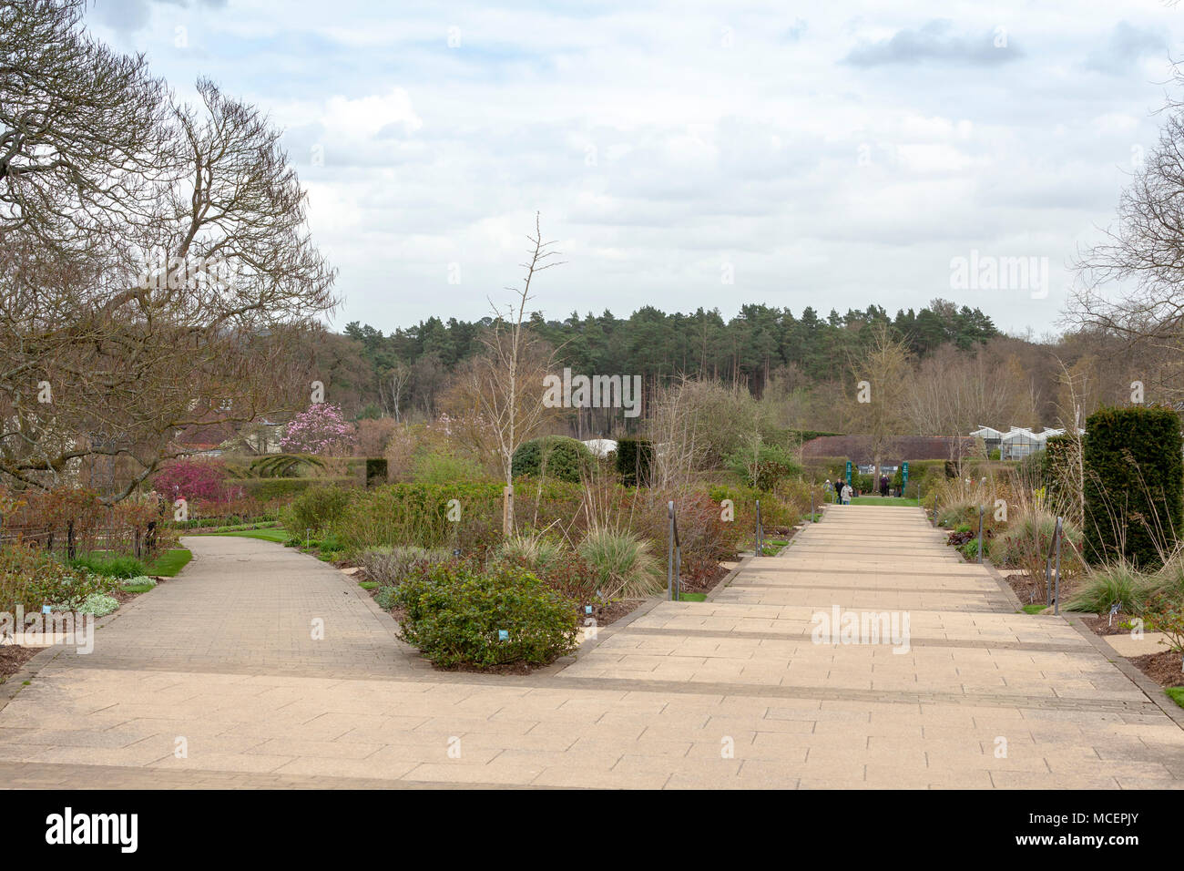 The grounds of RHS Wisley, Surrey - Stock Image