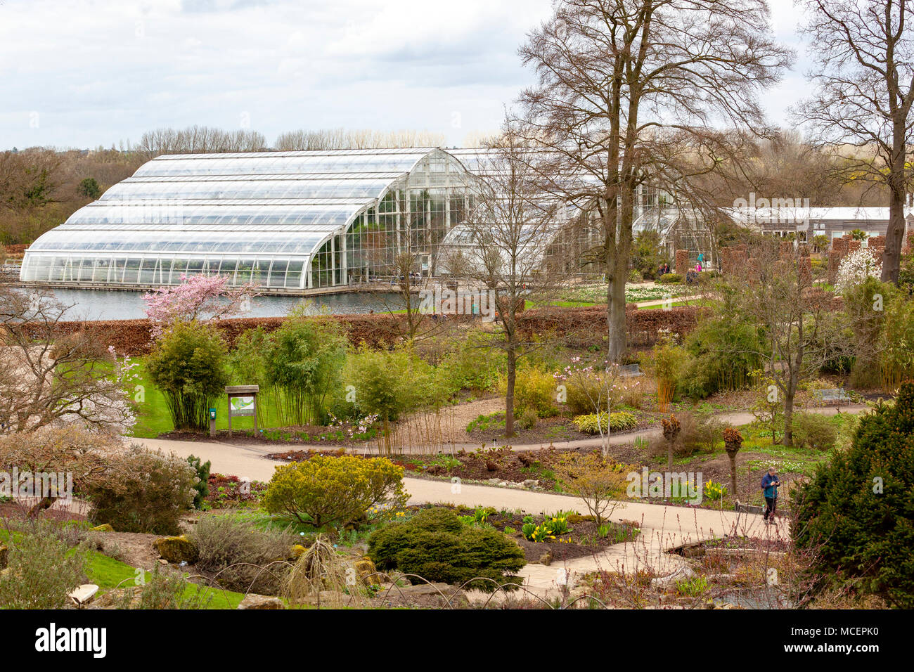 The Glasshouse at RHS Wisley - Stock Image