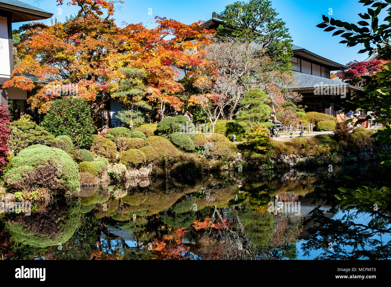 Wonderful foliage in the Shoyo-en japanese garden in Nikko Stock ...