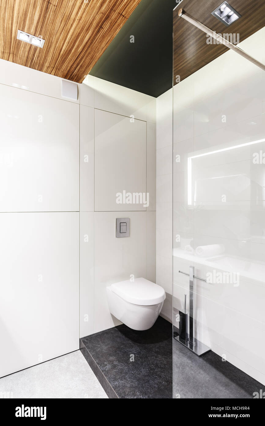 Simple bathroom interior with white walls, toilet seat and shower ...