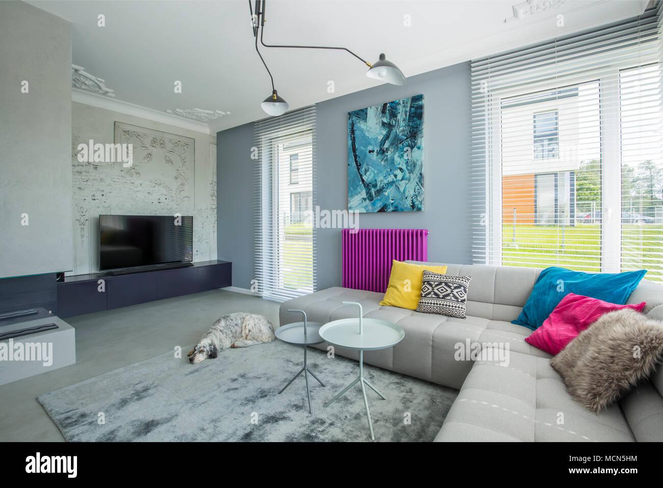 Stylish Gray, Spacious Movie Room Interior With Large Sofa, Tv, Bio  Fireplace, Sleeping Dog And Creative Colorful Decorations