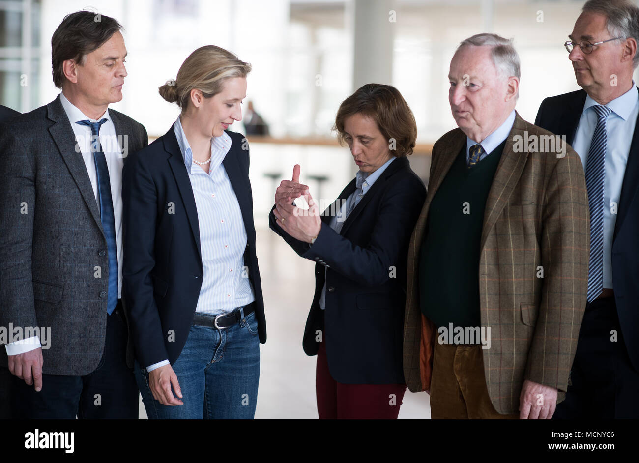 Christoph Storch afd germany storch stock photos afd germany storch stock images