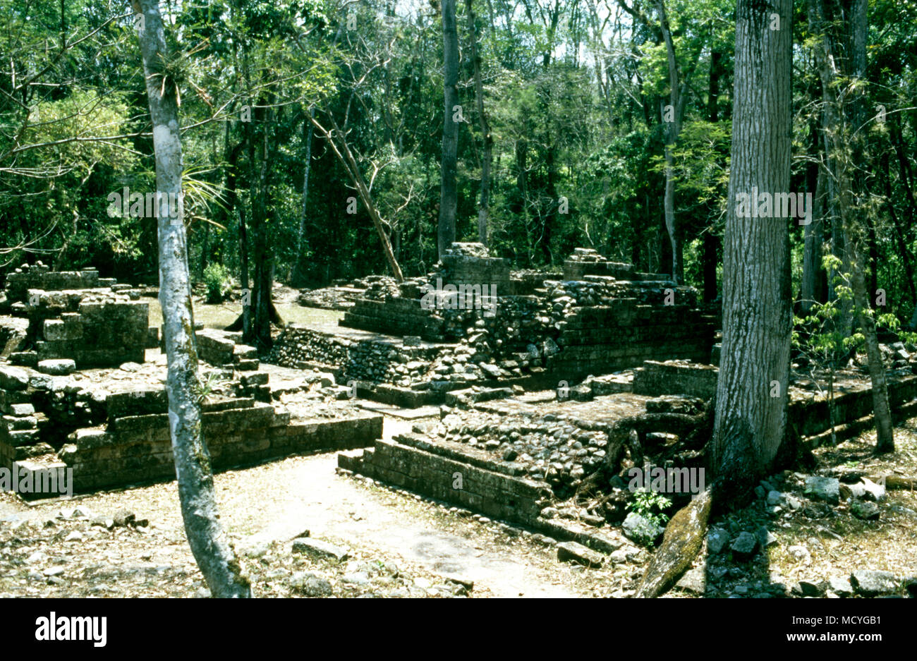 Ruins at the ancient Mayan archaeological site at Copan in western Honduras. - Stock Image