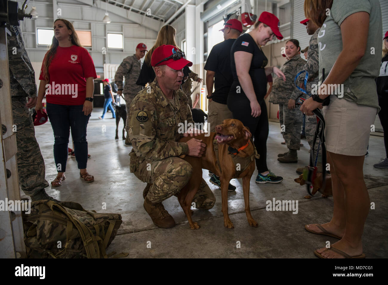 Us air force senior master sgt orlin rohde the airfields us air force senior master sgt orlin rohde the airfields superintendent with the 823rd red horse squadron greets his dog mckinley after returning m4hsunfo