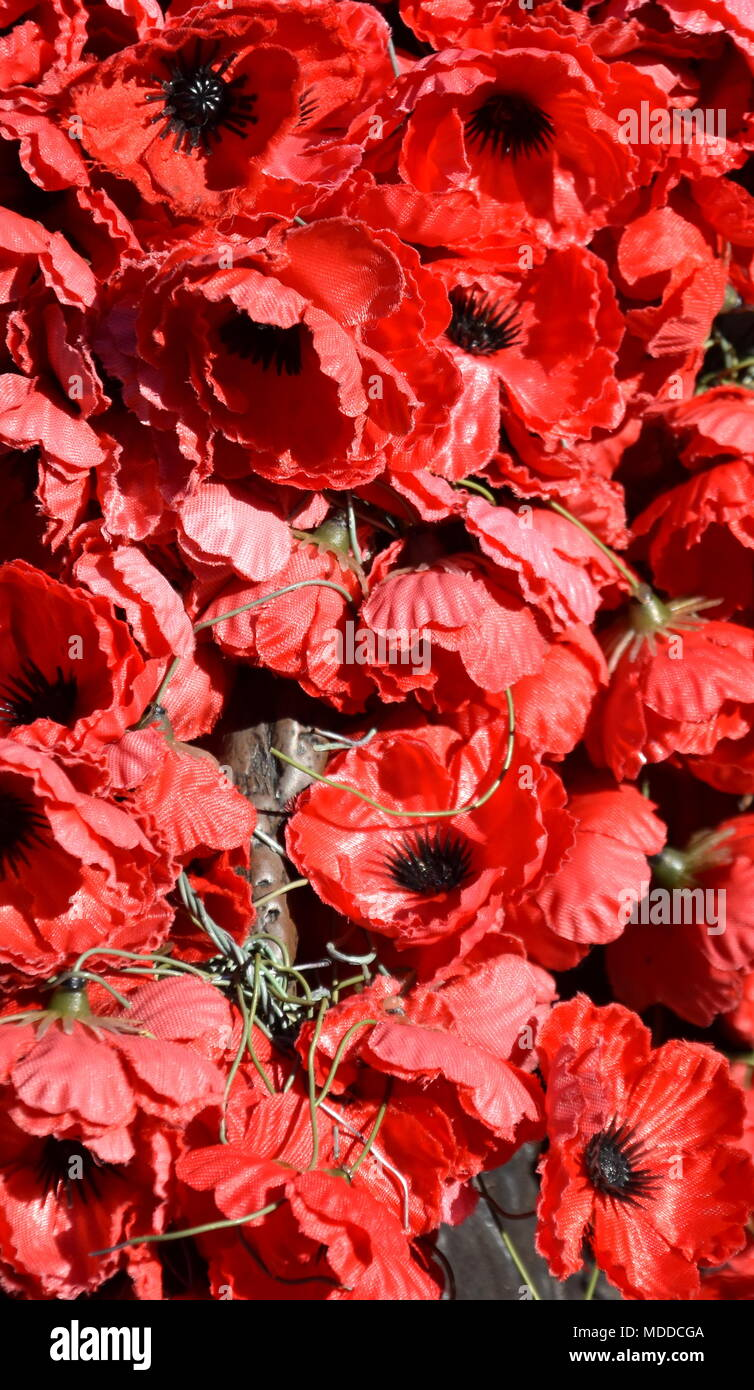 Plastic Red Poppies The Red Poppy Has Become A Symbol Of War