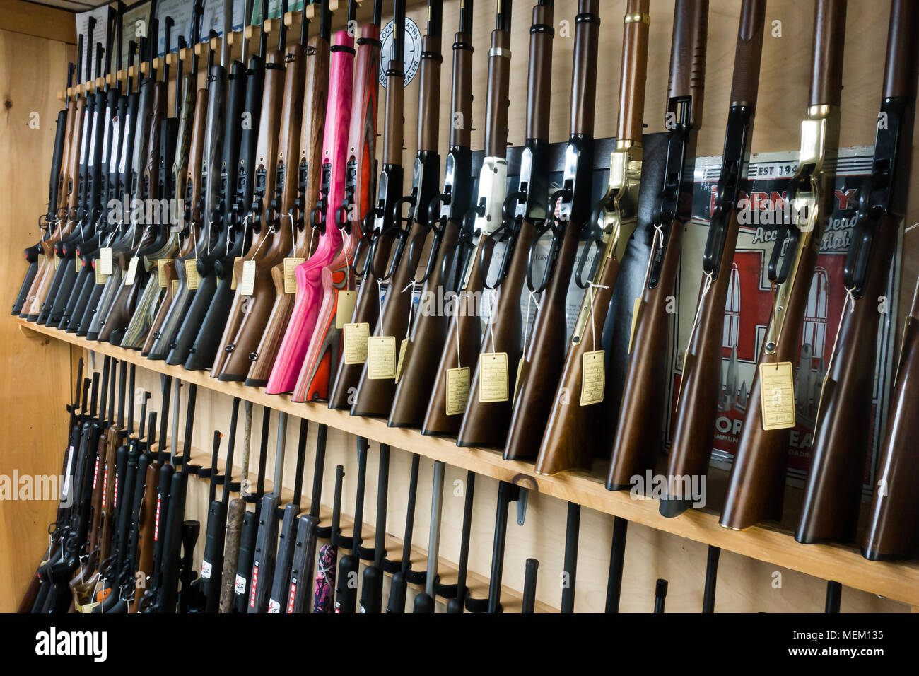 racks-full-of-rimfire-rifles-on-sale-in-a-gun-shop-MEM135.jpg