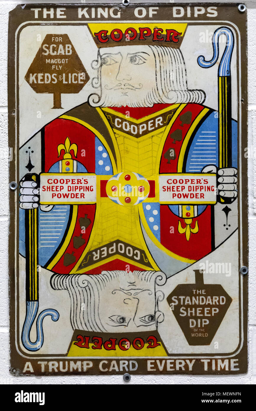 Old metal advertising sign for sheep dip - England, circa 1920. - Stock Image