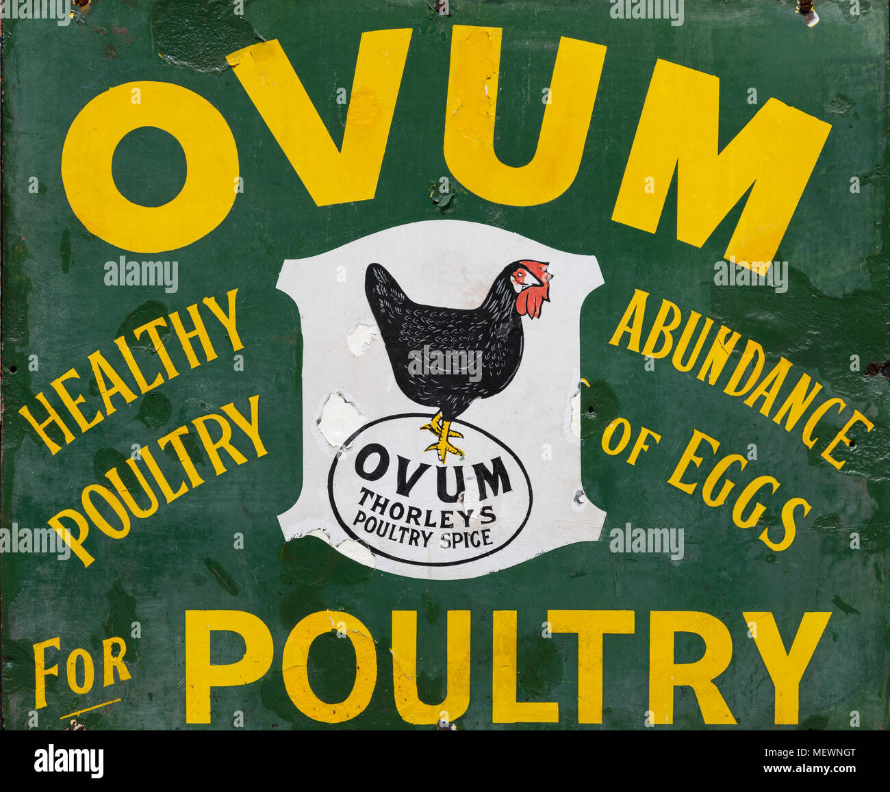 An old metal advertising sign for Ovum Poultry Spice - England, circa 1913. - Stock Image