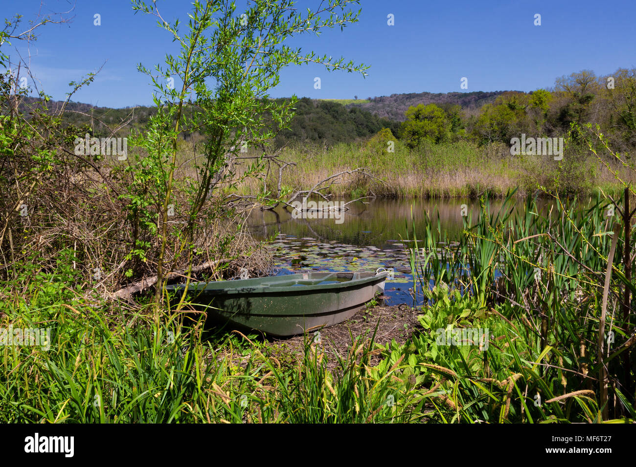 Naples (Italy) - The Cratere degli Astroni Nature Reserve is one of the few well-preserved craters of the whole Phlegraean fields - Stock Image