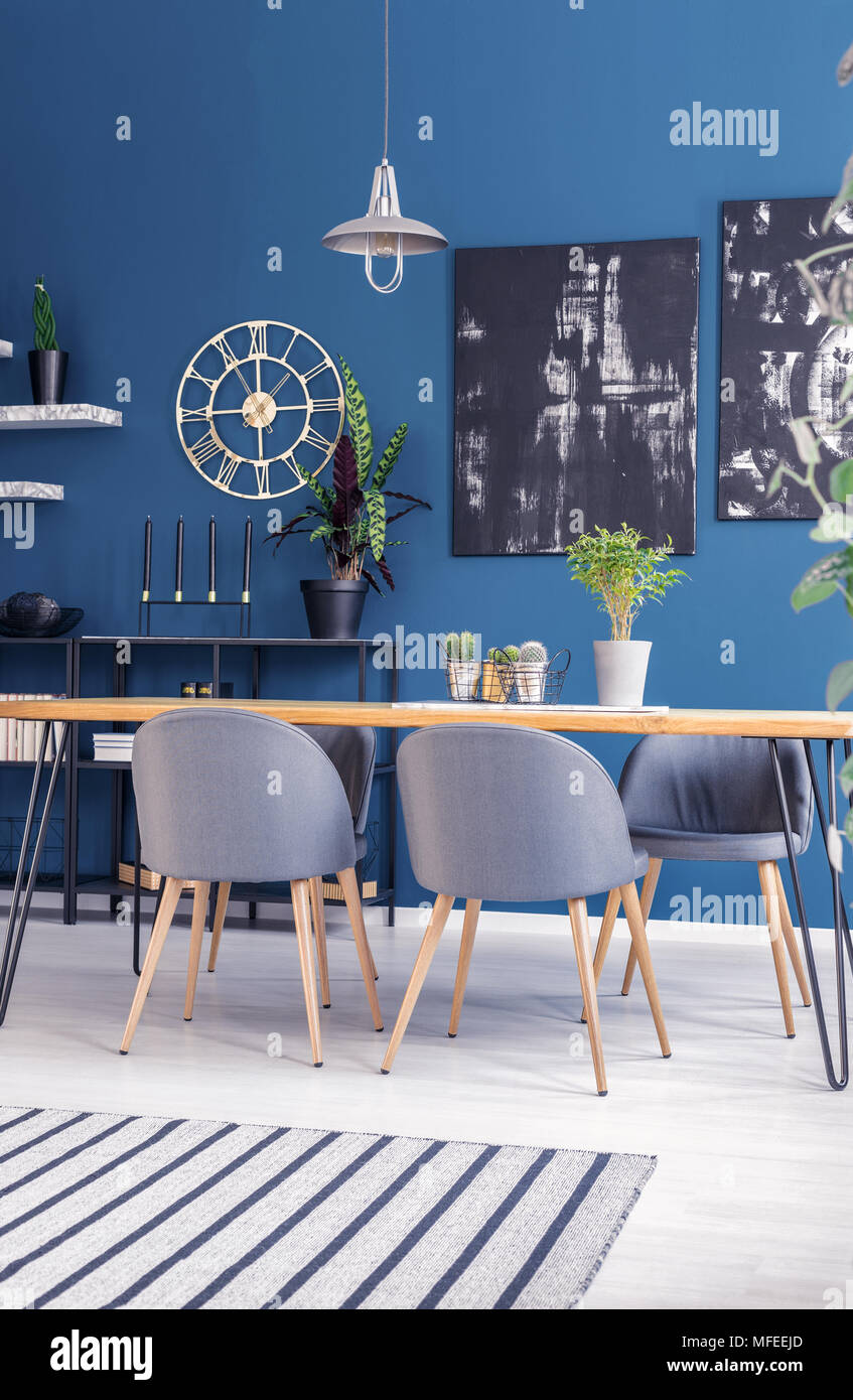 Black Paintings On Blue Wall With Gold Clock In Modern Dining Room Interior  With Grey Chairs At Table