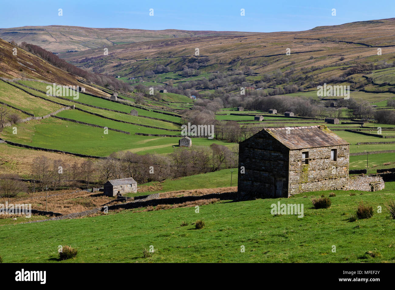 Old stone barns in Wenslydale in the Yorkshire Dales National Park in northeast England. - Stock Image
