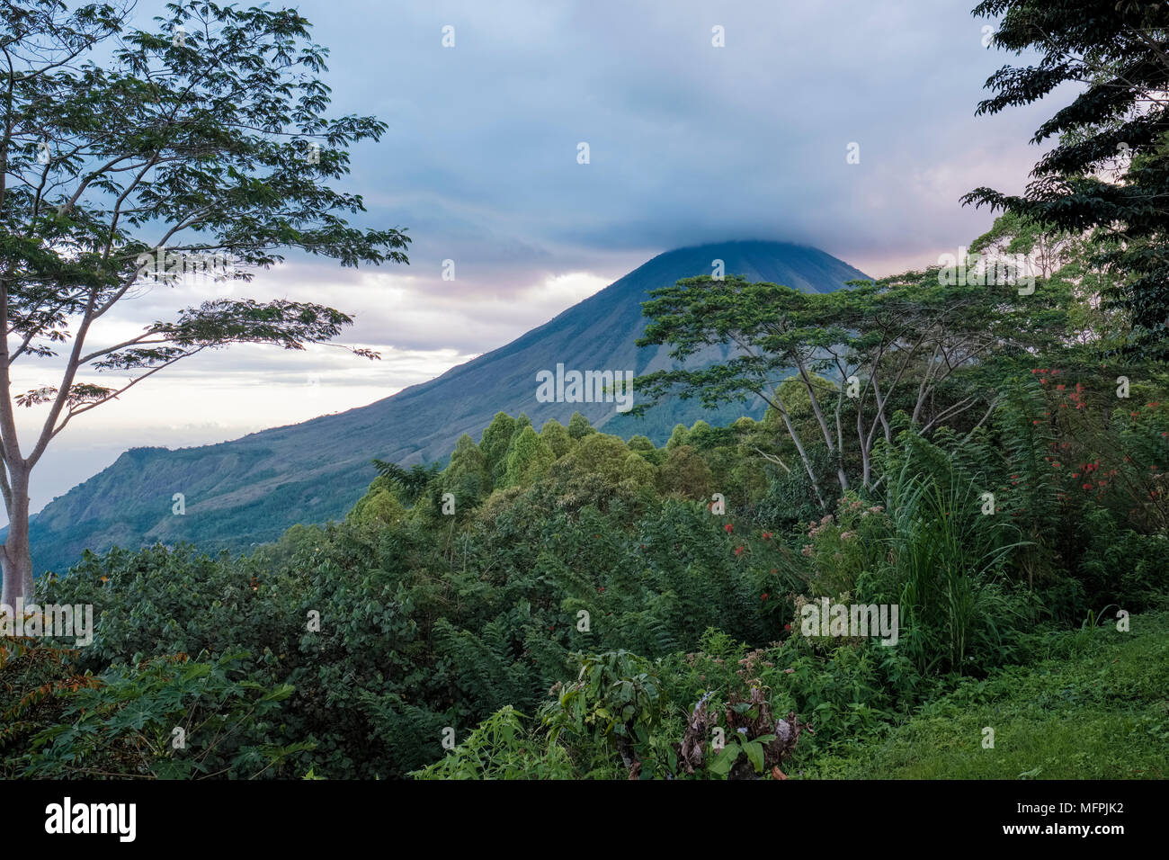 Cloud-capped Inerie volcano (2,227 m), one of the highest peaks in Flores Island (East Nusa Tenggara), Bajawa district, Indonesia. - Stock Image