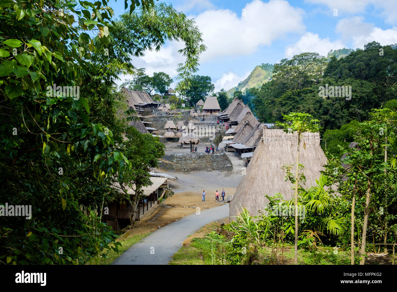 Overview of Bena traditional village, Ngada District, Flores Island (East Nusa Tenggara), Indonesia. - Stock Image