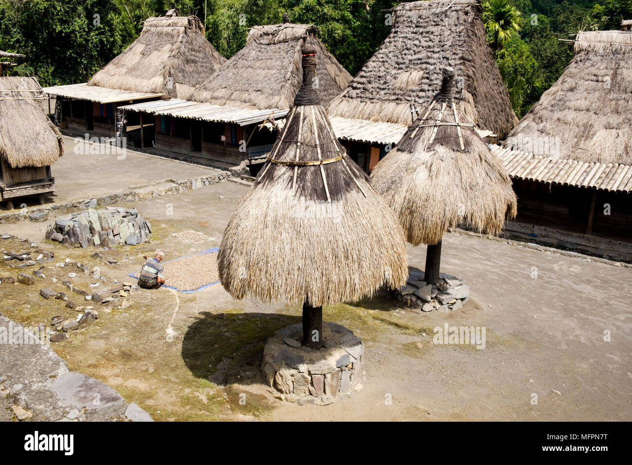 Houses (back) and 'ngadhu' (front, symbolising male ancestors) in Bena, Ngada District, Island of Flores, Indonesia. - Stock Image