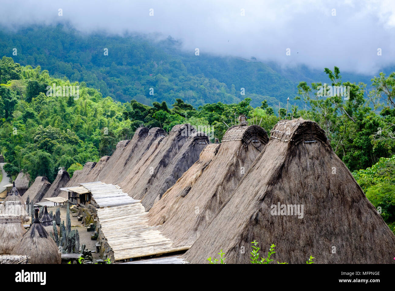 Thatched roofs and jungle, Bena traditional village, Ngada District, Island of Flores, Indonesia. - Stock Image