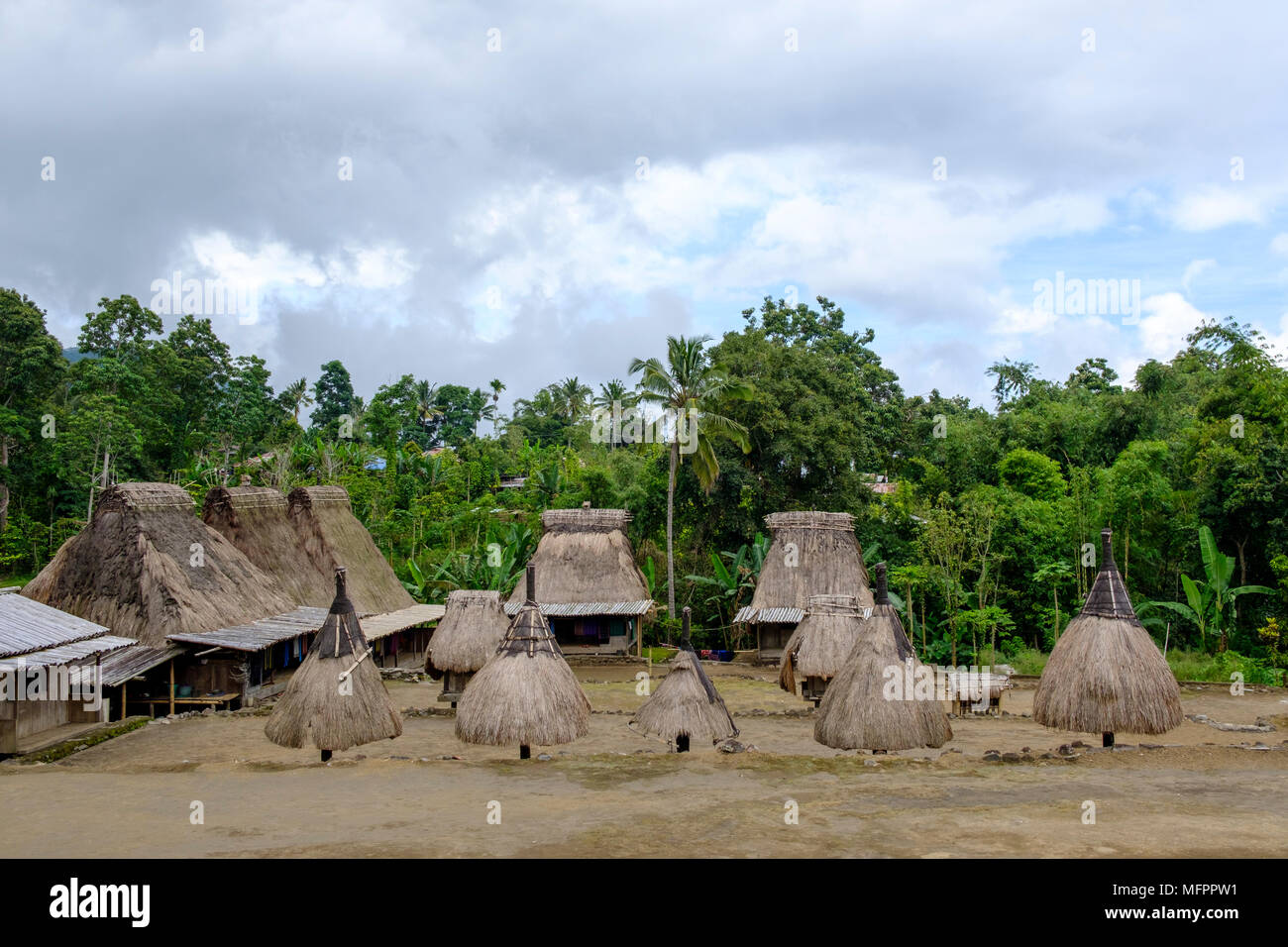 Thatched roof houses (back) and 'ngadhu' (front, symbolising male ancestors) at small Luba hamlet, Ngada District, Island of Flores, Indonesia. - Stock Image