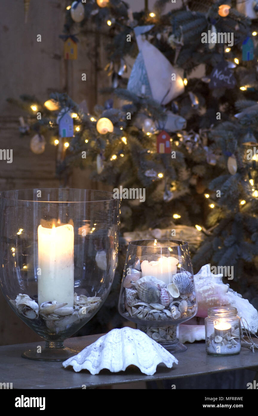 lit candle in hurricane lamp with shells with christmas tree in the background