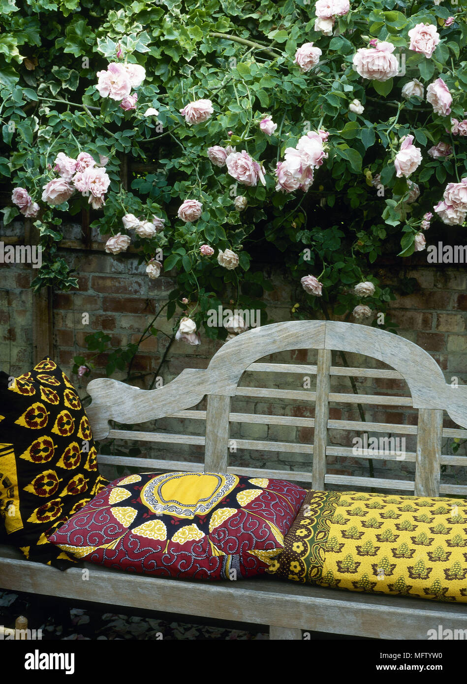 Wooden Garden Bench With Cushions Next To Garden Brick Wall With Climbing  Rose On Wall Fixed