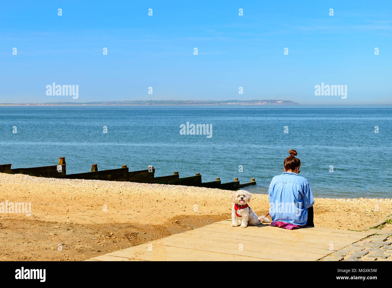 young-woman-sitting-reading-alone-on-a-b
