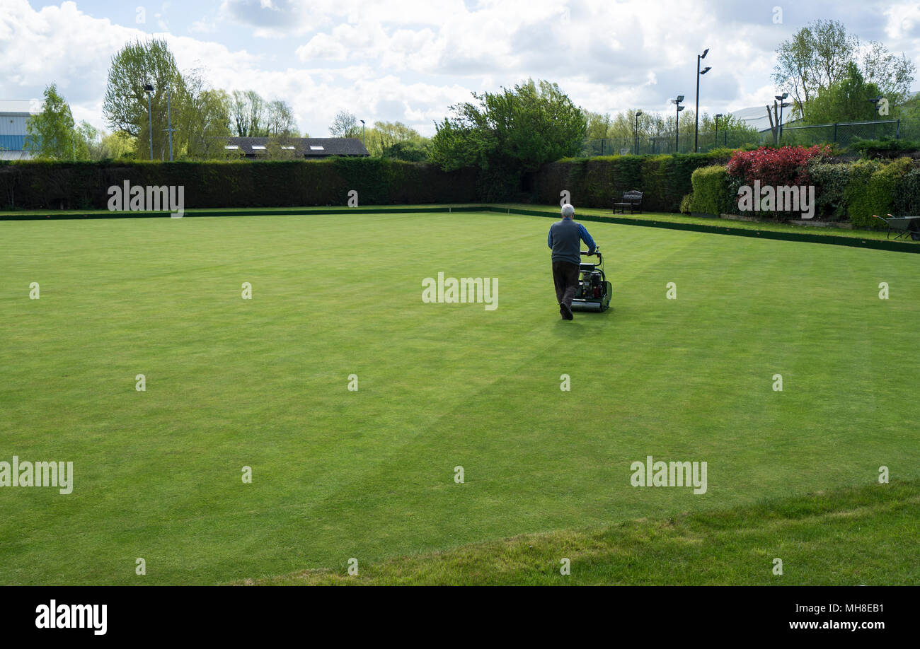 mowing-bowling-green-milton-cambridge-MH