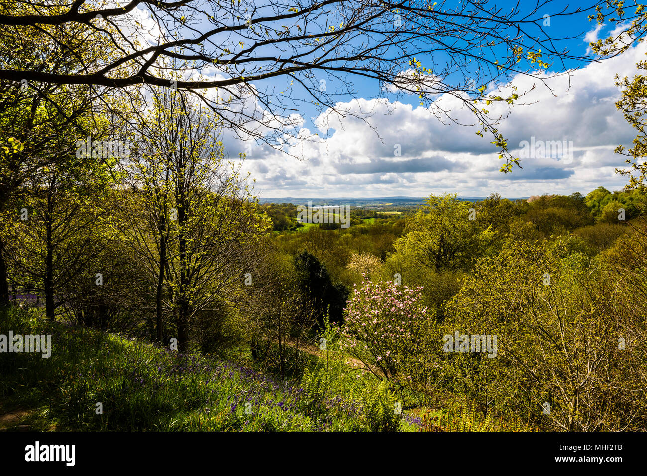 View over the valley from Emmetts Garden, Kent, UK - Stock Image