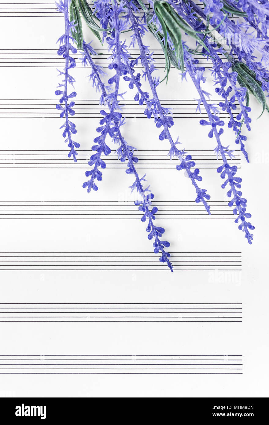 Blue Lavender Flowers On Empty Sheet Music Paper Sounds Of Nature